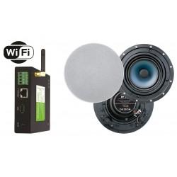 Timple Audio Zestaw Wi-Fi Multiroom z Głośnikami Dexon 100W (TWA40+RP 110)