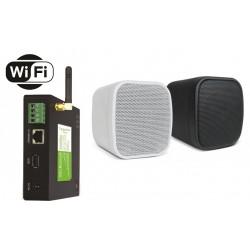 Timple Audio Zestaw Wi-Fi Multiroom z Głośnikami Ściennymi Neo (TWA40+NEO)