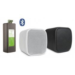 Timple Audio Odtwarzacz Bluetooth z Głośnikami Ściennymi Neo (TMN20EASY + NEO)