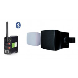 Timple Audio Odtwarzacz Bluetooth z Głośnikami Ściennymi Średnio i Nisko Tonowymi (TMN30EASY + DWX302 W/B)